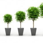 Inspiration For Spiritual Growth
